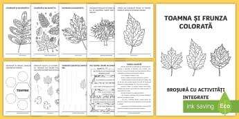 Toamna și frunza colorată Broșură cu activități integrate - clasa pregătitoare, jocuri, broșură, integrate, activități, toamna, litere, alfabet,Romanian