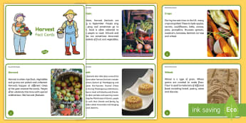KS1 Harvest Fact Cards - Festival, Autumn, Food, Farm, Celebration
