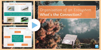 Organisation of an Ecosystem What's the Connection? PowerPoint - KS4 What's the Connection?, Ecosystem, Pollution, Carbon Cycle, Water Cycle, Transpiration, Evapora