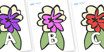 A-Z Alphabet on Corsages - A-Z, A4, display, Alphabet frieze, Display letters, Letter posters, A-Z letters, Alphabet flashcards