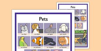 French Pets Word Grid - french, pets, word grid, word, grid, language