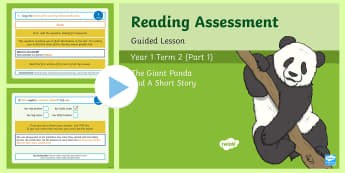 Year 1 Reading Assessment Term 2 Paper 1 Guided Lesson  PowerPoint - Year 1 Reading Assessment Guided Lesson PowerPoints, reading, read, assessment, test, powerpoint, ye