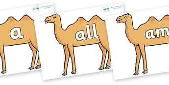 Foundation Stage 2 Keywords on Camels - FS2, CLL, keywords, Communication language and literacy,  Display, Key words, high frequency words, foundation stage literacy, DfES Letters and Sounds, Letters and Sounds, spelling