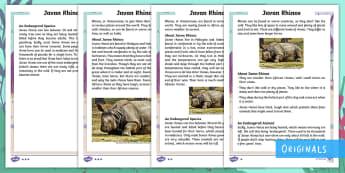 Year 2 Javan Rhinos Differentiated Fact File - Children's Books, Ronald the Rhino, children's book, endangered, animal, critically, extinct,  hab
