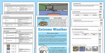 Year 4 Reading Assessment: Non-Fiction Term 3  - term 3, year 4, reading, assessment, non-fiction