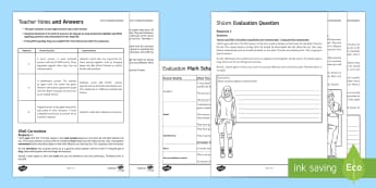 Shi'a Islam AfL Exam Questions Pack - Introduction to Shi'a Islam