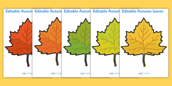 Editable Autumn Leaves - Display, editable, label, topic, Autumn, seasons, autumn pictures, autumn display, leaves, acorn, conker, atumn