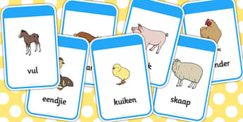 Afrikaans Ma's En Hulle Jong Plaasdiere Flitskaarte - ma en baba diere, jong diere, woordeskat, flitskaarte