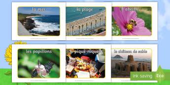 Photos d'affichage : L'été - photos d'affichage, été, photos, affichage; saisons, plage, mer, glace, littoral, soleil, fleurs,