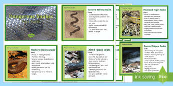 10 of Australia's Dangerous Snakes  Fact Cards - Australian Animals, reptiles, activity sheets, research, reading, writing, birds, fish, mammals, Aus