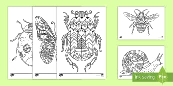 Insect Themed Mindfulness Coloring Activity Sheets - insects, minibeasts, coloring, creativity, art, activity, worksheets