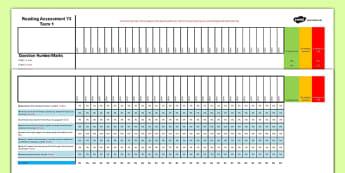 Year 3 Term 1 Reading Assessment Spreadsheet - test, sats, summative, diagnostic