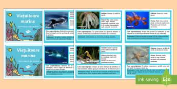 Viețuitoare marine Cartonașe informative - româna, animale, animale marine, viețuitoare marine, cartonașe informative, ,Romanian