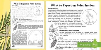 Catholic What to Expect on Palm Sunday Activity Sheets  - NI, Easter, Holy Week, Palm Sunday, Catholic, Mass, Lent, Northern Ireland, Passion, palms, KS2, yea