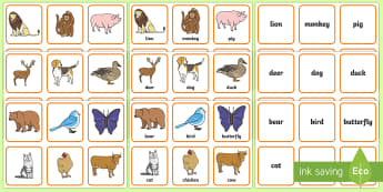 Animals Matching Cards - animals, sorting cards, activities, memory