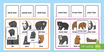 Bears Matching Cards and Boards Game - EYFS, Early Years, Bears, pandas, polar bear, brown bear, teddies, teddy bears, Brown Bear Brown Bea