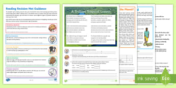 Y5 Reading 3 Revision Activity Mat Pack - Fiction, narrative, favela, brazil, football, world cup, inference, deduction, predicting, language,