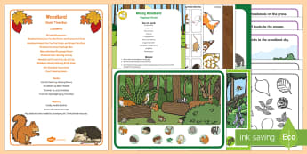 Forest and Woodland Quiet Time Box - quiet time, naps, napping, independent play, quiet activities