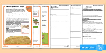 KS2 Pet Care of a Bearded Dragon Differentiated Comprehension Go Respond Activity Sheets - KS2 National Pet Month (April 2017), pets, bearded dragon, lizard, reading comprehension, comprehens