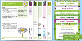 EYFS Forest and Woodland Science Experiments Resource Pack - woods, leaf, leaves, plants, butterfly, spider, outdoor learning, forest school