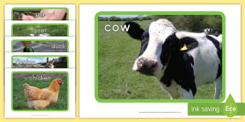 Farm Display Photos - Early Childhood Animals, Animals, Pre-K Animals, farm, K4 Animals, 4K Animals, Preschool Animals, Fa