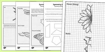 Symmetry in Nature Activity Sheet, worksheet