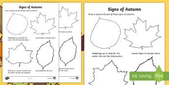 Signs of Autumn Read and Draw Activity Sheet - autumn, season, signs of autumn, activity sheet, reading, drawing,Irish, worksheet