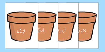 Months of the Year on Plant Pots Urdu Translation - urdu, months, year, plant pots, plant, pots