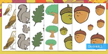 Little Acorns Size Ordering - EYFS, Little Acorns, Twinkl Originals, Twinkl Fiction, Autumn, Seasons, Plants and Growth, Growing,