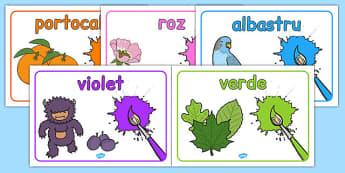 Culorile - Planșe