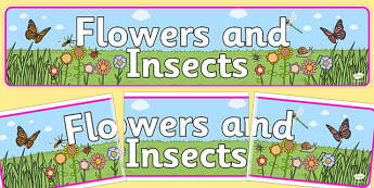 Flowers and Insects Banner - flowers, insects, ipc, banner