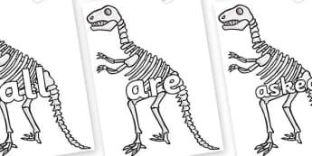 Tricky Words on Dinosaur Skeletons - Tricky words, DfES Letters and Sounds, Letters and sounds, display, words