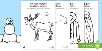 Coloriage magique : Les régions polaires - coloriage magique : les régions polaires, régions polaires, couleurs, nombres, compter, activité,