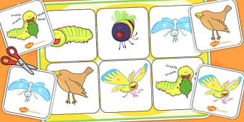 Matching Mat SEN to Support Teaching on The Crunching Munching Caterpillar - match
