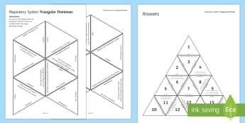 Respiratory System and Breathing Triangular Dominoes - Tarsia, Dominoes, Respiratory System, Breathing, Ventilation, Lungs, Alveoli, Gas Exchange, plenary activity