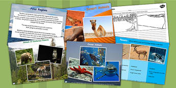 Living Things and Their Habitats Lesson Teaching Pack Flipchart
