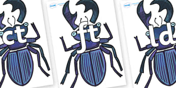 Final Letter Blends on Stag Beetle to Support Teaching on The Bad Tempered Ladybird - Final Letters, final letter, letter blend, letter blends, consonant, consonants, digraph, trigraph, literacy, alphabet, letters, foundation stage literacy