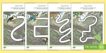 ورقة نشاط تمرين الكتابة مع رسومات الغابة الاستوائية  - الغابة الاستوائية، مهارات حركية، ورقة تمرين، مسار، ال