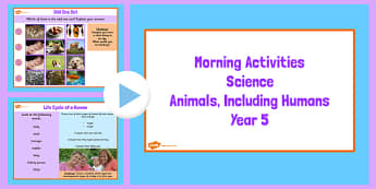 Year 5 Early Morning Science Activities Animals - science, animal