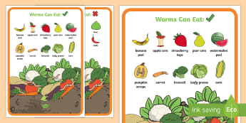 What to Feed the Worms in Your Worm Farm Display Facts Posters - Sustainability, wormery, worms, looking after worms, information on worms, Australia