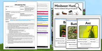Minibeast Hunt EYFS Adult Input Plan and Resource Pack - adult focus