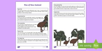 Moa of New Zealand Fact Sheet - Aotearoa, native birds, extinct, Year 1-3, birds, fact file, moa