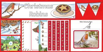 Robins Resource Pack - Robins, British wildlife, British birds, winter, Waitrose advert
