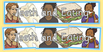 Teeth And Eating Display Banner - teeth, eat, mouth, tongue, eating, tooth, toothpaste, mouthwash, toothbrush, display, banner, sign, poster, dental, dentures, dental floss, dentist, sweet, savoury, healty, food, use your toothbrush, taste, brushing