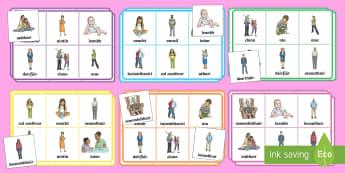 My Family Bingo Gaeilge - Gaeilge, Bingo, Games, Irish,vocabulary, foclóir, mo chlann, my family, mé féin, myself,Irish