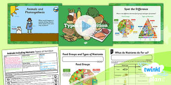 Science: Animals Including Humans: Types of Nutrition Year 3 Lesson 1