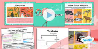 PlanIt - Science Year 4 - Living Things and Their Habitats Lesson 2: Classifying Vertebrates Lesson Pack - living things, habitats, variation, classification, vertebrates