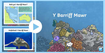 Pŵerbwynt Y Barriff Mawr - reef, barrif, pysgod, o dan y mor, fish, under the sea,Welsh