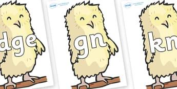 Silent Letters on Owl Babies - Silent Letters, silent letter, letter blend, consonant, consonants, digraph, trigraph, A-Z letters, literacy, alphabet, letters, alternative sounds