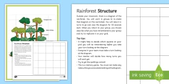 Rainforest Structure Memory Game Activity Pack - structure, rainforest, activity, pack, interactive, fun